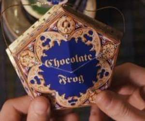 chocolate frogs image