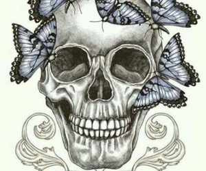 art, skull, and butterfly image