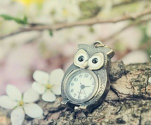 animal, flowers, and clock image