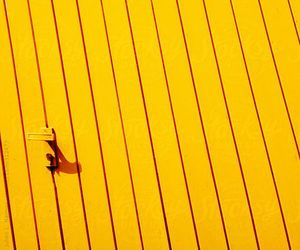 color, photography, and yellow image