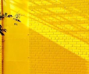 theme and yellow image