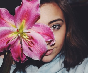 beauty, flower, and flowers image