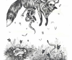 animal, skulls, and art image