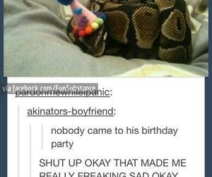 snake, funny, and birthday image