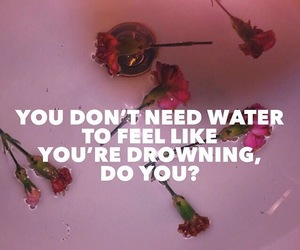 quotes, grunge, and roses image