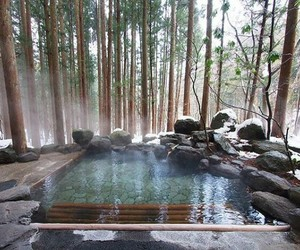 japan, nature, and pool image