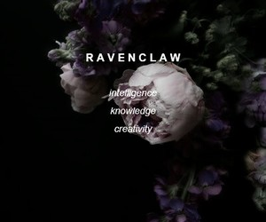 harry potter, ravenclaw, and aesthetic image