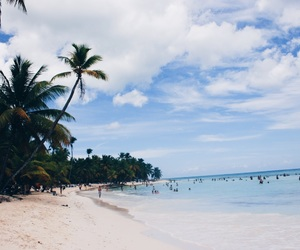 beach, palmtrees, and punta cana image