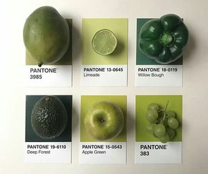 fruit, green, and apple image