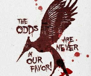 hunger games and catching fire image