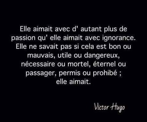 french, quote, and victor hugo image