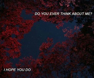 quotes, red, and sad image