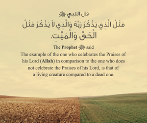 allah, arabic, and dead image