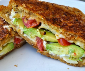 avocado, food, and grilled cheese image