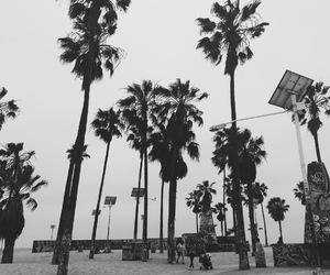 beach, blackandwhite, and california image