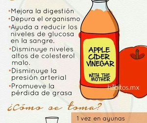 apple, cider, and health image