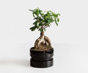 minimal, minimalist, and minimalism image
