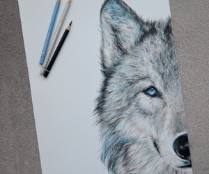 wolf, art, and black image
