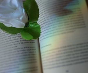 books, retro, and flowers image