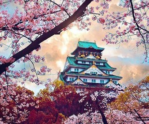 japan, spring, and travel image