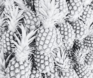 australia, black and white, and FRUiTS image