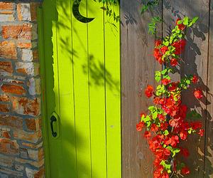 green and door image
