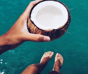 coconuts, photography, and tan image