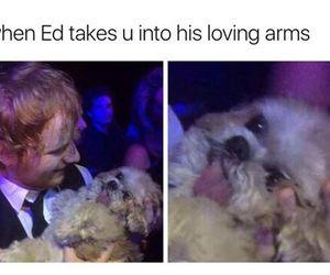 lol and ed sheeran image