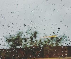 nature, raindrops, and sad and happy image