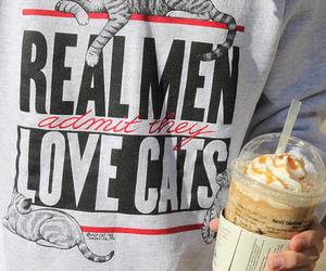 cat, boy, and men image