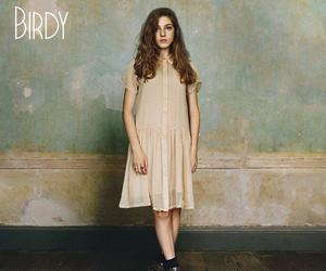 birdy, music, and skinny love image