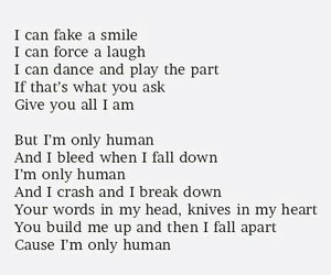 human, Lyrics, and christina perri image