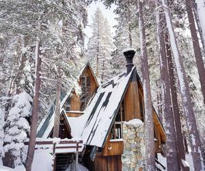cabin, forest, and cozy image