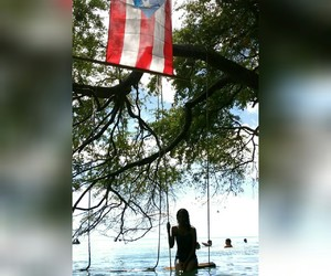 beach, Island, and nature image
