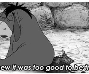 true, sad, and quotes image