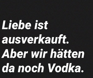 alkohol, deutsch, and drunk image