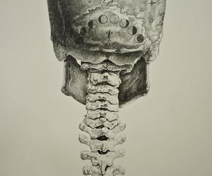 skull, moon, and art image
