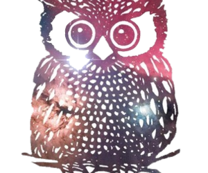 illustration and owl image
