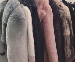 fur and theme image