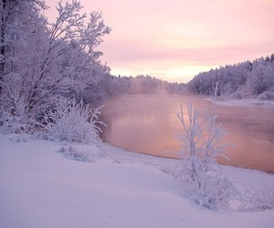 snow, winter, and purple image