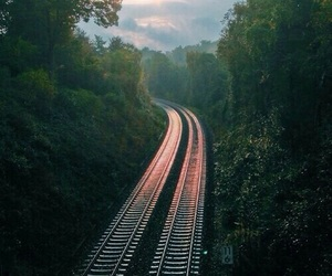 nature, forest, and train image