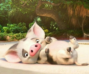 moana and pua image