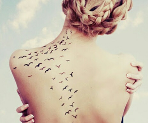 delicate and birds image