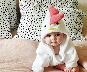 baby, cute, and Chicken image