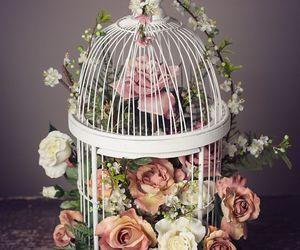 bird cage, cage, and fantasy image