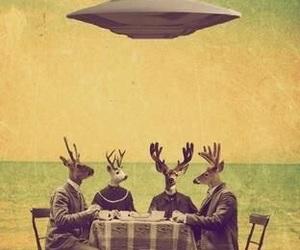 deer, fashion, and funny image