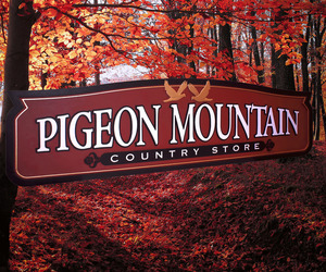 store signs, country store, and pigeon mountain image