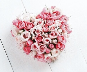 flowers, rose, and heart image