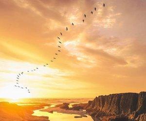 escape, sea, and sun image