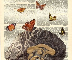 art, brain, and butterflys image